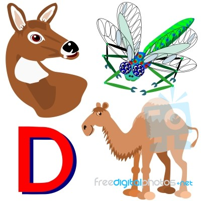 animals name start with letter d stock image royalty free image id