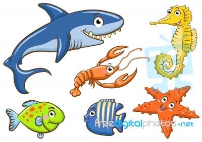 Aquatic Animals Stock Image - Royalty Free Image ID 100105428