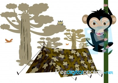 C&ing Tent And Monkey On tree Stock Image  sc 1 st  FreeDigitalPhotos.net & Camping Tent And Monkey On tree Stock Image - Royalty Free Image ...