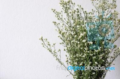 Dried bouquet of white flowers stock photo royalty free image id dried bouquet of white flowers stock photo mightylinksfo