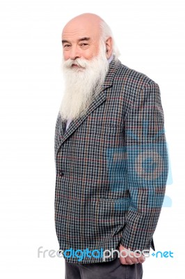 Handsome old man in suit stock photo royalty free image id 100300350 handsome old man in suit stock photo publicscrutiny Images