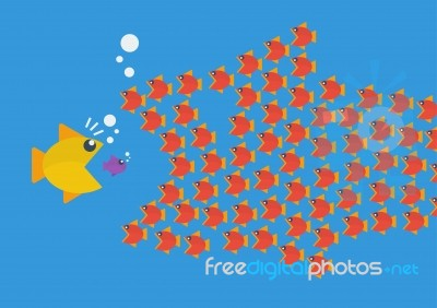 Little Fish Eat Big Fish Stock Image Royalty Free Image