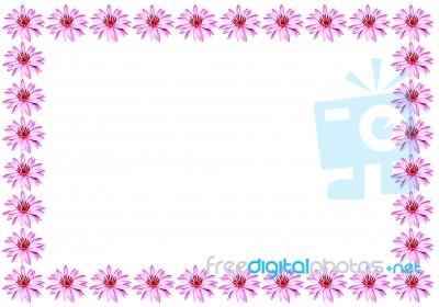Lotus Flower Border Stock Photo Royalty Free Image ID